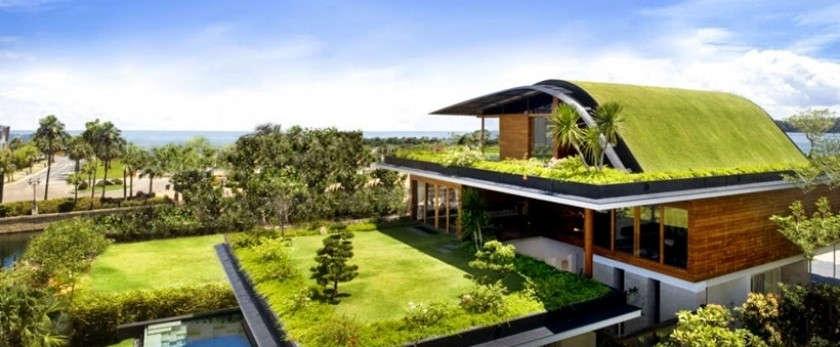 Как сделать газон на крыше