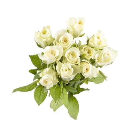 Букет Роза 40 см 11 шт.
