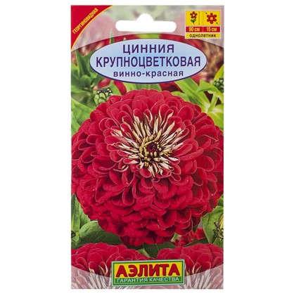 Цинния винно-красная Крупноцветковая
