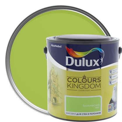 Декоративная краска для стен и потолков Dulux Colours Kingdom цвет тропический лес 2.5 л