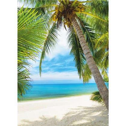 Фотообои бумажные Под пальмой 140x200 cм