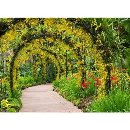 Фотообои флизелиновые Цветочная арка 370х270 см