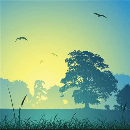 Фотообои флизелиновые Пробуждение 200х200 см