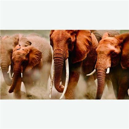 Фотообои флизелиновые Слоны 200х370 cм