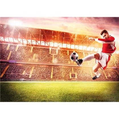 Фотообои Футбольный триумф 140х100 см