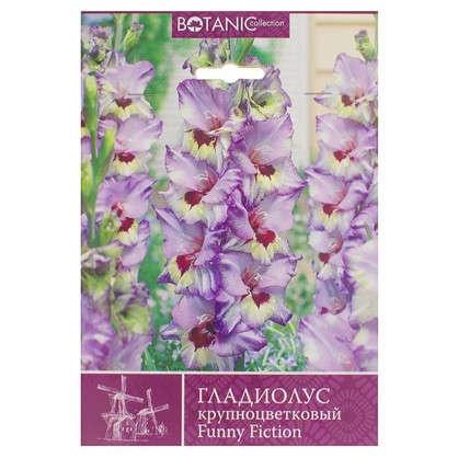 Гладиолус крупноцветковый Фанни Фикшн