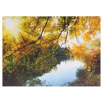 Холст 70х50 см желтый лес