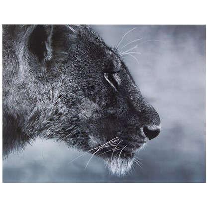 Картина без рамы 40х50 см Дикая львица