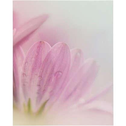 Картина без рамы Розовый цветок 40х50 см