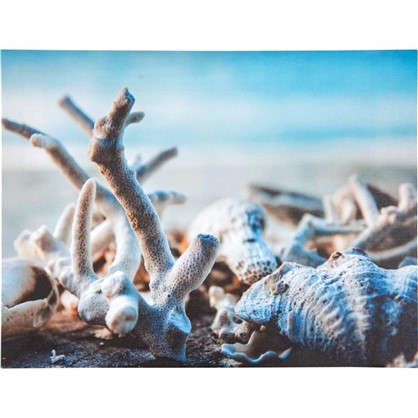 Картина на холсте Кораллы 30х40 см