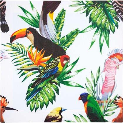 Картина на холсте Тропические птицы 40х40 см