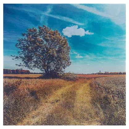 Картина на стекле 30х30 см Дерево у дороги