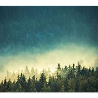 Картина на стекле 30х30 см Мистический лес