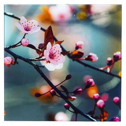 Картина на стекле 30х30 см Японская вишня