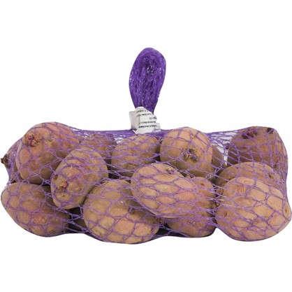 Картофель семенной Маяк 2 кг