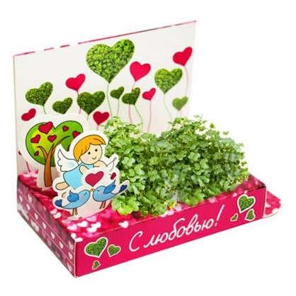 Коллекция Романтика: Вырасти любовь!