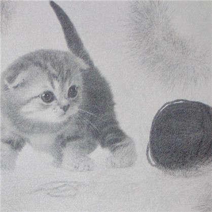 Обои Котята 255-01 бумажные дуплекс цвет серый 0.53x10 м