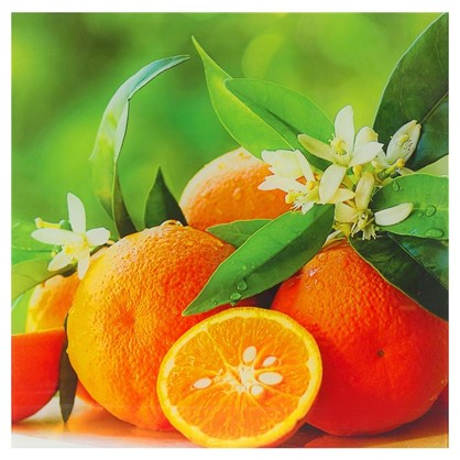 Постер на стекле 40х40 см Апельсины