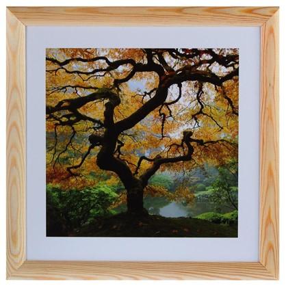 Постер в раме 40х40 см Осенний Клен