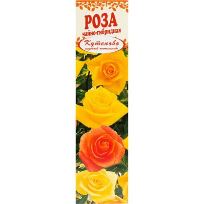 Роза чайно-гибридная Эмми в коробке