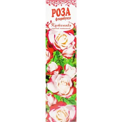 Роза Флорибунда Мид Саммер в коробке