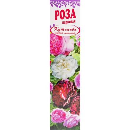 Роза парковая Фердинард Пичард в коробке