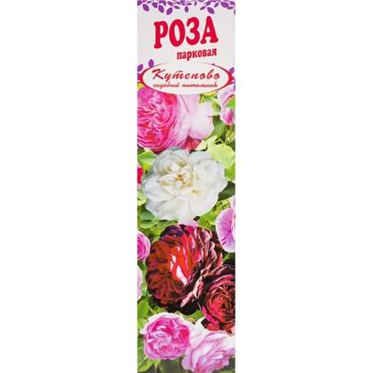 Роза парковая Луис Одьер в коробке