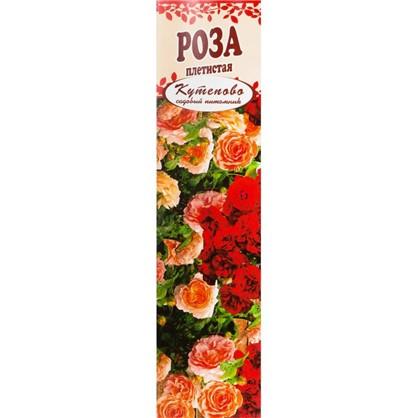 Роза плетистая Шнеевальцер в коробке