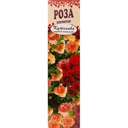 Роза плетистая Виктория в коробке
