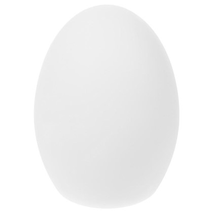 Светильник светодиодный аккумуляторный Яйцо RGB 20 см цвет белый