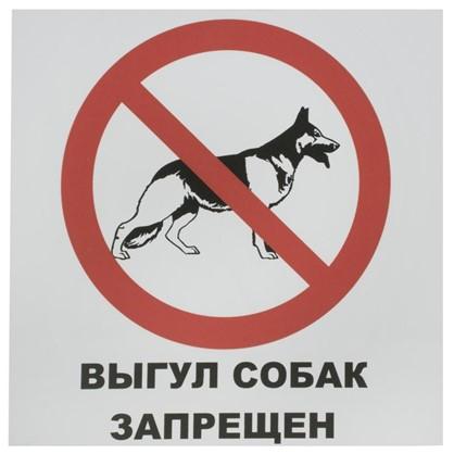 Табличка на вспененной основе Выгул собак запрещен пластик