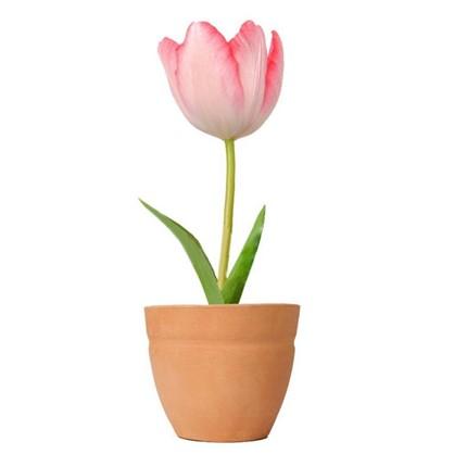 Тюльпан микс 12х15 см