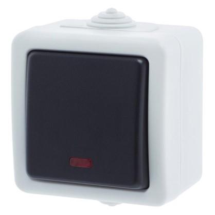 Выключатель Aqua с подсветкой цвет серый IP54