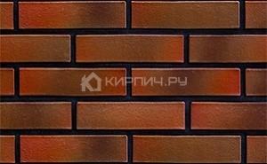 Кирпич Terca Futura Cyberna гладкий 250х120х65