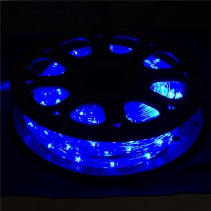 Гирлянда для улицы дюралайт синий 8 м 24 лампы в